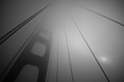 San Francisco Photo Metal Prints - The Harpists Sun Metal Print by Image By Marc Gutierrez