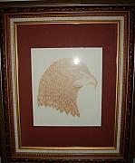 Eagle Drawing Drawings Originals - The Hawk. by Roy Penny