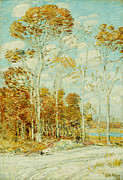 Tall Trees Paintings - The Hawks Nest by Childe Hassam