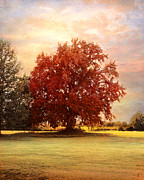 Autumn Landscape Art - The Healing Tree  by Jai Johnson