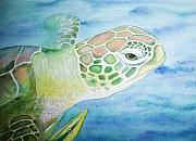 Green Sea Turtle Paintings - The Hitch Hiker by Carmen Durden