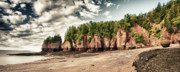 The Hopewell Rocks Print by Levin Rodriguez