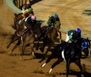 Horses Digital Art - The Horse Race by Steven  Digman