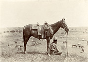 1910s Candid Framed Prints - The Horse Wrangler, Photograph By Erwin Framed Print by Everett
