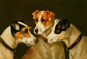 Collar Painting Prints - The Hounds Print by Alfred Wheeler