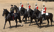 Household Cavalry Framed Prints - The Household Cavalry Performs Framed Print by Andrew Chittock