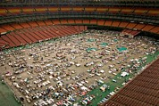 Floods Photos - The Houston Astrodome Housed by Everett
