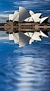 Sydney Harbour Posters - The iconic Sydney Opera House Poster by Sheila Smart