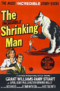 1950s Poster Art Photo Metal Prints - The Incredible Shrinking Man, Bottom Metal Print by Everett