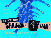 1957 Movies Prints - The Incredible Shrinking Man, Grant Print by Everett