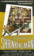 Silver Screen Posters - The Incredible Shrinking Man Poster by Nomad Art and  Design