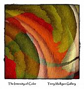 Terry Mulligan - The Intensity of Color