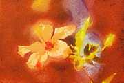 Sweating Painting Prints - The iris flower Print by Odon Czintos