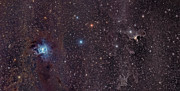 Star Clusters Posters - The Iris Nebula In Cepheus Poster by John Davis