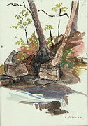 Rocks Drawings - The Jessup Indian Lake NY by Ethel Vrana