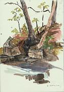 The Jessup Indian Lake Ny Print by Ethel Vrana