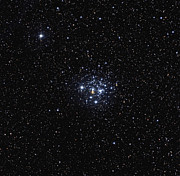 Open Clusters Prints - The Jewel Box Open Cluster Print by Don Goldman