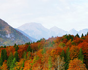 Lake Bohinj Framed Prints - The Julian Alps in Autumn at Lake Bohinj Framed Print by Greg Matchick