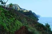 Kalalau Trail Posters - The Kalalau Trail Poster by Michael Peychich