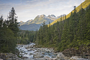 Pacific Northwest Rivers Prints - The Kennedy River Flows Print by Taylor S. Kennedy