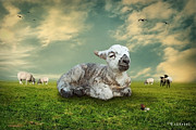 Adorable Digital Art Prints - The Lamb Print by Ethiriel  Photography