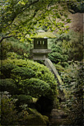 Japanese Garden Framed Prints - The Lantern Framed Print by Rebecca Cozart