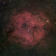 Stellar Photos - The Large Ic 1396 Emission Nebula by Robert Gendler