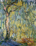 Impressionism Landscape Framed Prints - The Large Willow at Giverny Framed Print by Claude Monet