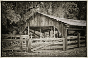 Wooden Fence Framed Prints - The Last Barn Framed Print by Joan Carroll