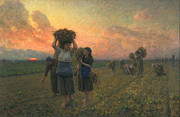 Sunset Scenes. Painting Framed Prints - The Last Gleanings Framed Print by Jules Breton