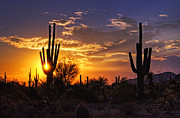 Southwest Landscape Metal Prints - The Last Light  Metal Print by Saija  Lehtonen