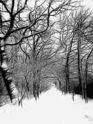 Snowy Road Prints - The last path Print by Stefan Kuhn