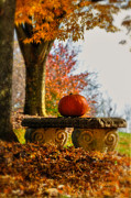 Stone Bench Prints - The Last Pumpkin Print by Lois Bryan
