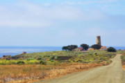 Panoramic Ocean Originals - The Light At Piedras Blancas - San Simeon California by Christine Till