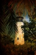 Frond Posters - The Lighthouse in Key West Poster by Susanne Van Hulst