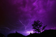 Lightning Photography Posters - The Lightning Spread Poster by Lisa  Spencer