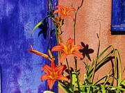 Day Lillies By A Purple Door Art - The Lillies By My Back Door by Donna Parlow