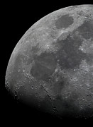 Mare Serenitatis Prints - The Limb And Terminator Of The Waxing Print by Luis Argerich
