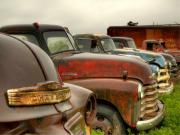 Chevy Trucks Posters - The Line Up 2 Poster by Thomas Young