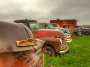 Chevy Trucks Posters - The Line Up Poster by Thomas Young
