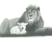 Religious Prints Drawings - The Lion and the Lamb by EJ John Baldwin