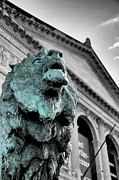 Chicago Photographs Framed Prints - The Lion-arted Framed Print by Sheryl Thomas
