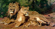 Lioness Painting Prints - The Lions at Home Print by Rosa Bonheur