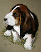 Puppies Pastels Posters - The Little Basset Poster by Mary Sparrow Smith