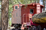 Arizona Prints - The Little Red Caboose Print by Donna Van Vlack