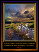 Inspirational Poster Framed Prints - The Little Things Framed Print by Phil Koch