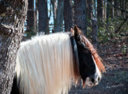 Storybook Prints - The Living Unicorn Print by Terry Kirkland Cook