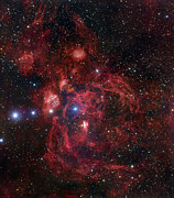 Starlight Prints - The Lobster Nebula In Scorpius Print by Robert Gendler