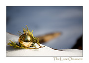 Holiday Cards Photos - The Lone Ornament - 4th Edition by Peter Tellone