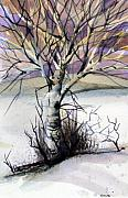 Dusk Drawings Framed Prints - The Lone Tree Framed Print by Mindy Newman